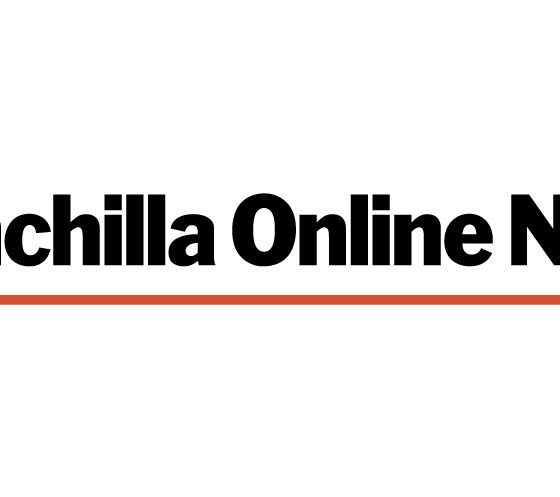 Chinchilla Online News