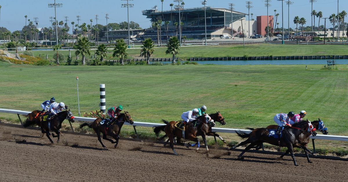 Banned Trainer's Horse Among 2 Dead Following Los Alamitos Race