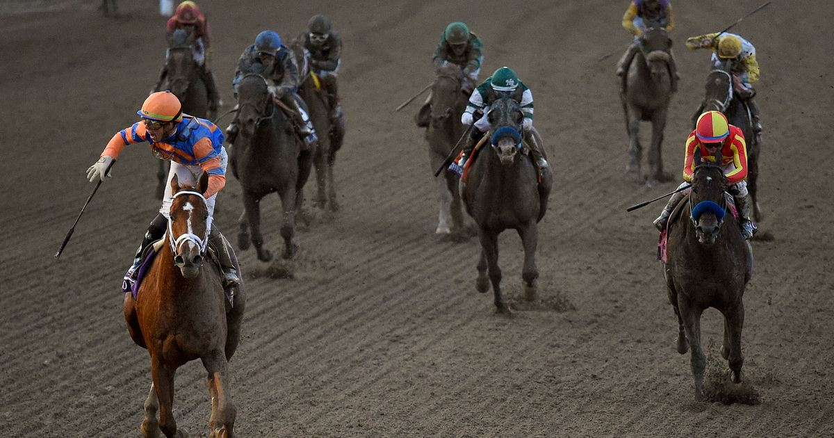 Another Horse Dies At Santa Anita Park Ahead Of Its Opening Weekend