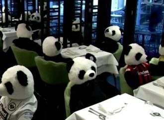 German Restaurant Protests Pandemic Lockdowns With Stuffed Pandas