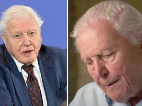 David Attenborough's heartbreaking plea after admitting 'I don't have long left'